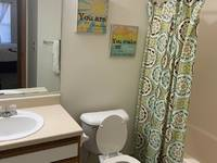 $785 / Month Apartment For Rent: 800 Long Street - Village Management Group   ID...